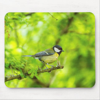 Great tit, parus major mouse pad
