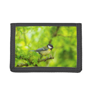 Great tit, parus major trifold wallet