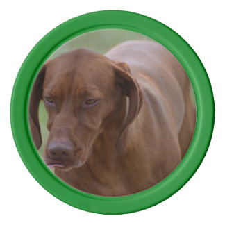 Great Vizsla Dog Poker Chips Set