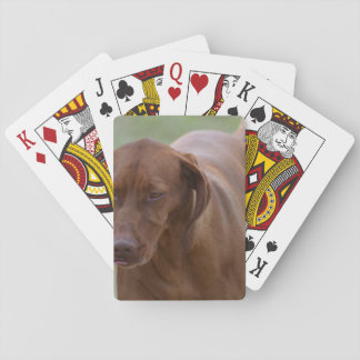 Great Vizsla Dog Poker Deck