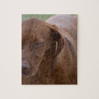 Great Vizsla Dog Puzzles