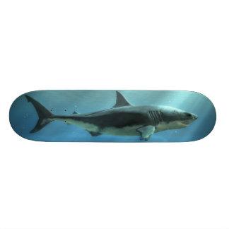 Great White Deck Skateboards