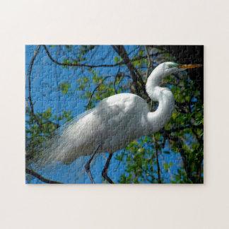 Great White Egret Florida. Jigsaw Puzzle