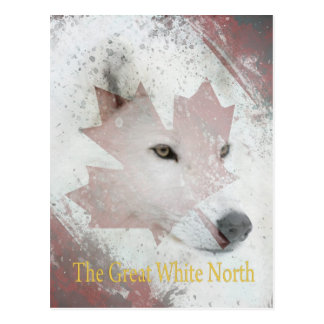 great white north postcard