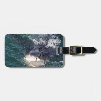 Great white shark spy hopping luggage tag