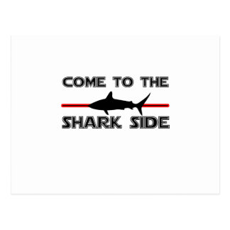 Great White Sharks  Come to the Sharks Funny Postcard
