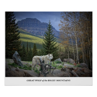 Great Wolf of the Rocky Mountains Poster