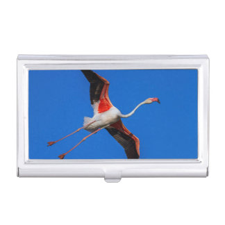 Greater flamingo, phoenicopterus roseus business card cases