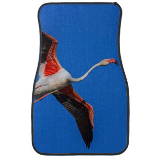 Greater flamingo, phoenicopterus roseus car mat