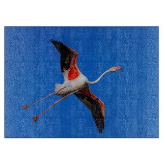 Greater flamingo, phoenicopterus roseus cutting board