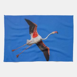 Greater flamingo, phoenicopterus roseus kitchen towel