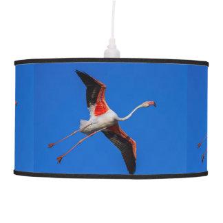 Greater flamingo, phoenicopterus roseus pendant lamp