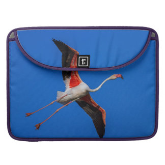 Greater flamingo, phoenicopterus roseus sleeve for MacBook pro