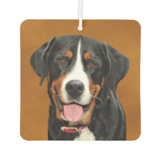 Greater Swiss Mountain Dog Car Air Freshener