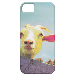 Greatest of All Time pink eared goat iPhone 5 Cases