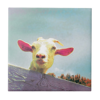 Greatest of All Time pink eared goat Tile