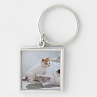 Greece, Mykonos, Kittens playing. Silver-Colored Square Keychain