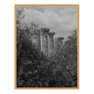 greek ruins on sicily postcard