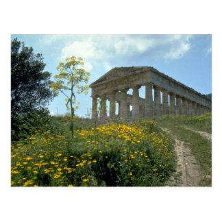 Greek Temple, Segesta, Sicily, Italy Postcard