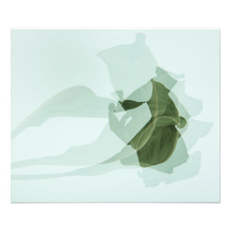Green Abstract Double Exposure Photo of Leaf