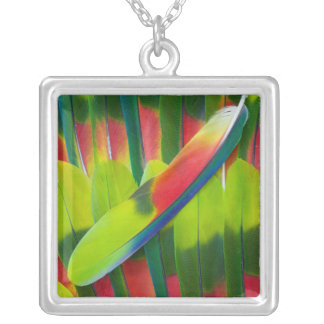 Green amazon parrot feathers silver plated necklace