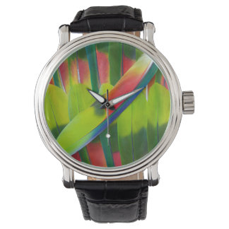 Green amazon parrot feathers wrist watches