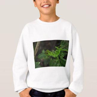 Green Amazonas lizard Sweatshirt