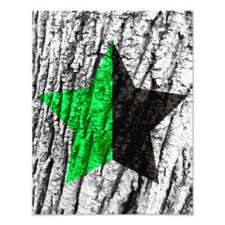 Green Anarchy Star Skin of Tree Photo Art
