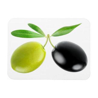 Green and black olives rectangular photo magnet