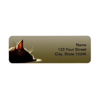 Green and Grey Cat Nap Return Address Label
