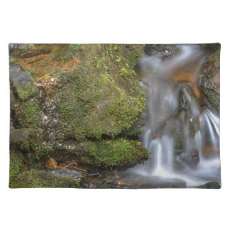 Green and Mossy Water Flow Placemat