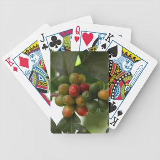 Green and Red Coffee Beans Bicycle Playing Cards