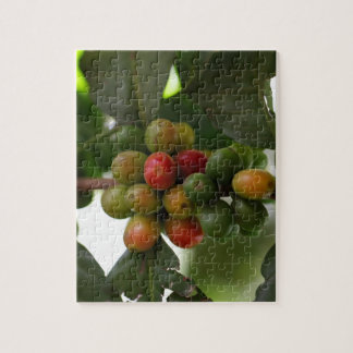 Green and Red Coffee Beans Jigsaw Puzzle