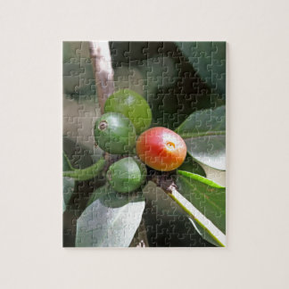 Green and Red Coffee Beans Puzzle