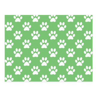 Green and white paws pattern postcard