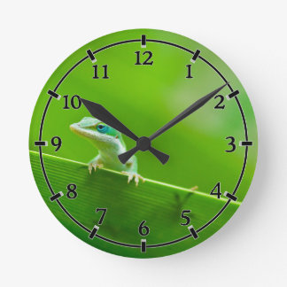 Green Anole Lizard Encounter Cute little thing Round Clock
