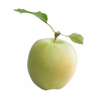 Green apple standing photo sculpture