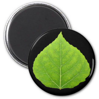 Green Aspen Leaf #11 2 Inch Round Magnet