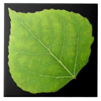 Green Aspen Leaf #11 Tile