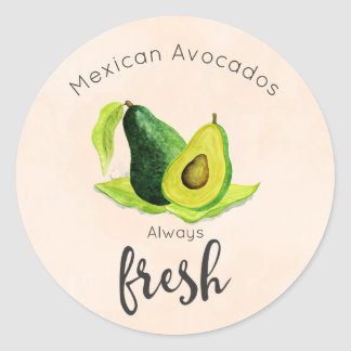 Green Avocado Still Life Fruit in Watercolors Round Sticker