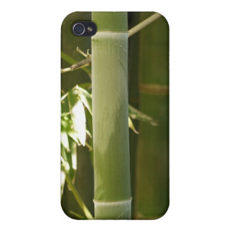 Green Bamboo Cases For iPhone 4