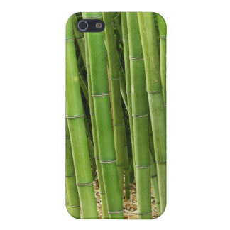 Green Bamboo iPhone 5 Cases