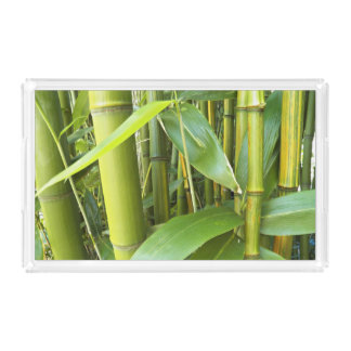 Green Bamboo Plants Floral Acrylic Tray