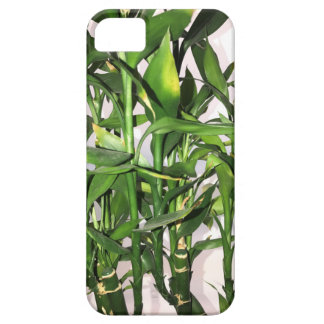Green bamboo shoots and leaves iPhone 5 covers