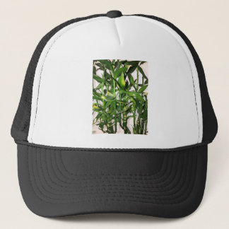 Green bamboo shoots and leaves trucker hat