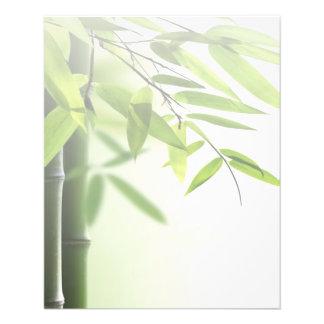 Green Bamboos/Spa Skin Care Massage Salon Custom Flyer