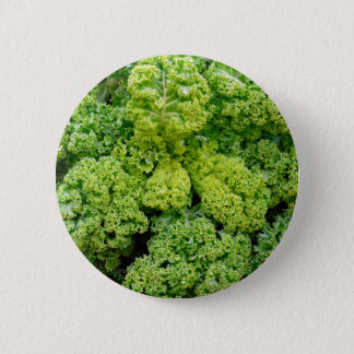 Green bare 2 inch round button