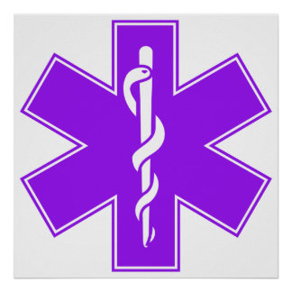 Green Black Grey Purple  Nurse EMS Star of Life Poster