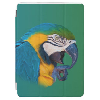 Green, Blue and Gold Parrot iPad Air Cover