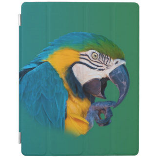 Green, Blue and Gold Parrot iPad Cover